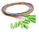 SC/APC Pigtail 12 Fiber SM Multi Color Fiber Pigtails 3 Meters