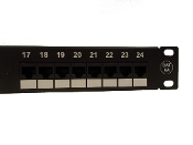UTP CAT6A patch panel, 24 ports ,dual IDC