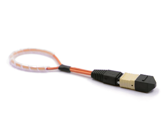 MTP/MPO Fiber Optic Loopback Multimode 62.5/125um Male