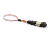 MTP/MPO Fiber Optic Loopback Multimode 62.5/125um Female